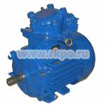Электродвигатель АИММ 63В2 фото 1