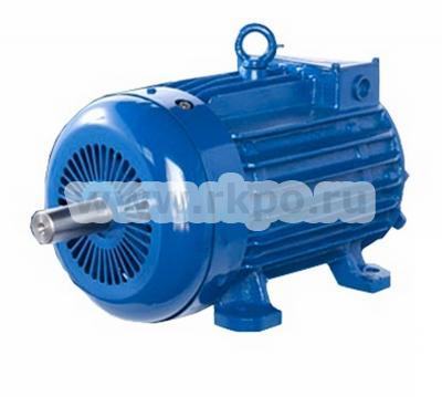 Электродвигатель 4MTK 200LA6 фото 1